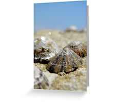 Limpets Greeting Card