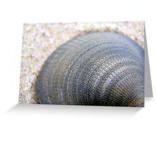 Grey Shell Greeting Card
