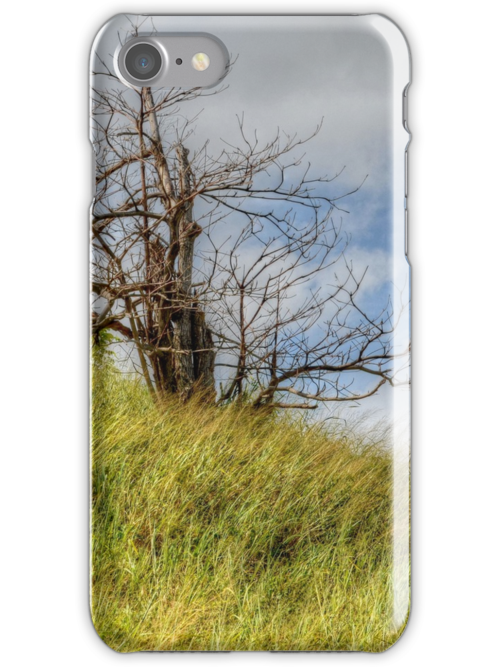 Lonely Tree | iPhone/iPod Case by Jeremy Lavender Photography