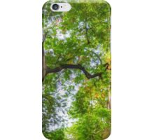 Looking Up | iPhone/iPod Case iPhone Case/Skin
