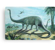 Diplodocus Canvas Print