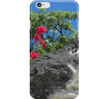 Touch of Red | iPhone/iPod Case iPhone Case/Skin