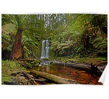Beauchamp Falls, Otway Ranges Poster