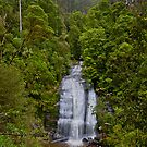 Little Aire Falls, Great Otway National Park by pablosvista2