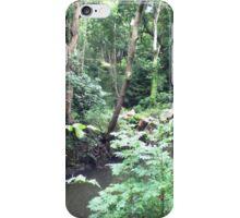 Stream through the woods iPhone Case/Skin