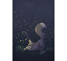 Firefly Fox - Grey Photographic Print