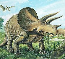 Triceratops by David Roland