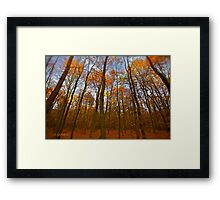 Autumn  - My wonderful Galicia by Andrzej Goszcz. Featured 5 star Excellence Valerie Anne Kelly. Framed Print