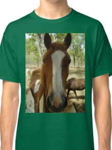 This lovely gentle Horse, on a T shirt, fit for adults, or kids. Classic T-Shirt