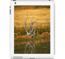 """Lone Survivor"" / iPad Case iPad Case/Skin"
