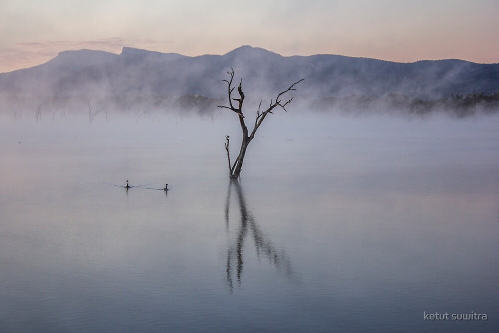 early morning mist by ketut suwitra