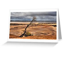 Salt Lake Western Australia Greeting Card