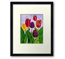 Tulip colours Framed Print