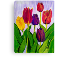 Tulip colours Canvas Print