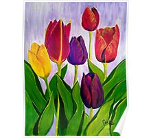 Tulip colours Poster