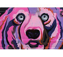 Melbourne Graffiti Street Art Pink Bear Photographic Print