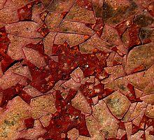 Eggshell Rust ipad case by Vanessa Barklay