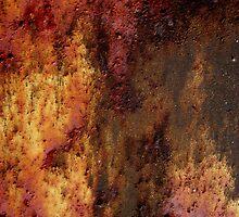 Rusty Rust ipad case by Vanessa Barklay