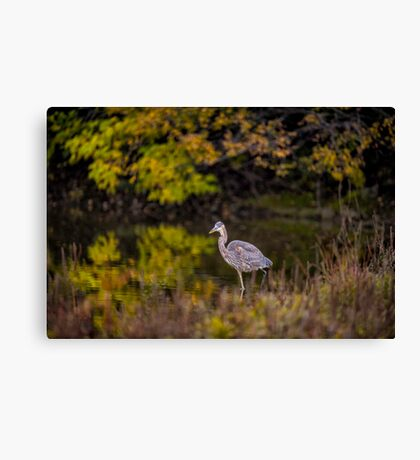 All by Myself Canvas Print