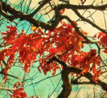 Gnarled Old Oak Tree Sticker