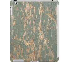 Paint ipad case iPad Case/Skin
