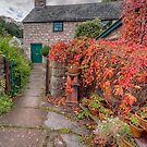 Path To Autumn Cottage by Adrian Evans
