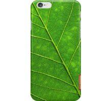 Leaf iPhone Case/Skin