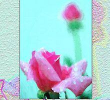 Pink Rose on Teal by drivebye