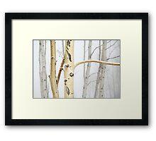 Deer Valley Aspen Framed Print