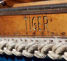 Tiger name on boat Salcombe, Devon, UK by silverportpics