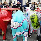 The Mayors Udder Side by NiallMcC