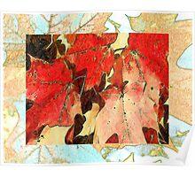 Fall Leaf Orange Poster
