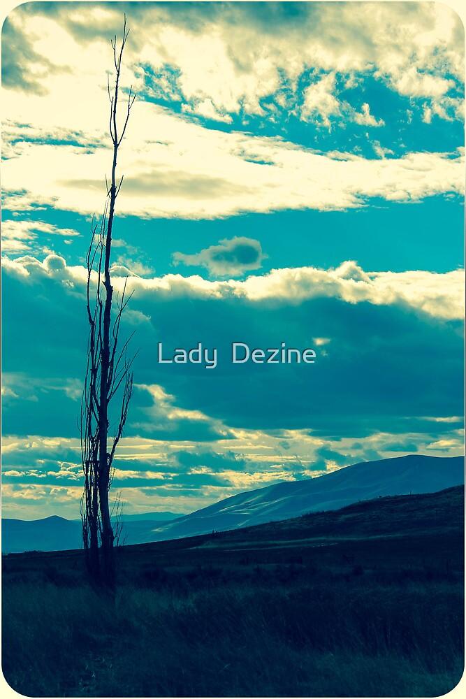Cloudy day  by Lady  Dezine