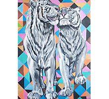 Tiger Love Photographic Print