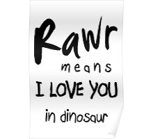 "RAWR - means ""I LOVE YOU"" in dinosaur Poster"