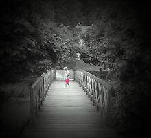 Lonely    ...bridge by Redrose10