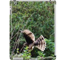 Hawk on the hunt iPad Case/Skin