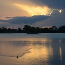 Murray Lagoon, Rockhampton by Jennifer Eurell