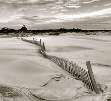 Wavy Fence by Monte Morton