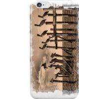PELICAN ROOST iPhone iPhone Case/Skin