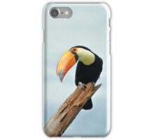 a toucan can! iPhone Case/Skin