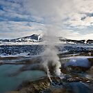 Volcanic vents, Krafia, North Iceland by Dean Bailey