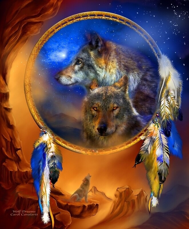 Dream catcher wolf dreams by carol cavalaris redbubble for Dream catcher spray painting