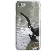 All in a flap. iPhone Case/Skin