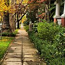 Sidewalks of Sacramento by Barbara  Brown
