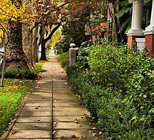 Sidewalks of Sacramento by Barbara  Brown