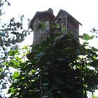 birdhouses by cielleigh