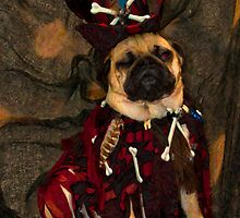 Big Bad VooDoo Daddy Pug by pupstardesign