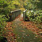 bridge to Jade Bay, Cultus Lake, BC by cielleigh