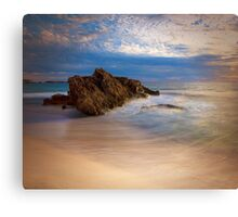 Motion in the Ocean Canvas Print